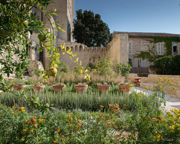 Les Jardins du Palais des Papes