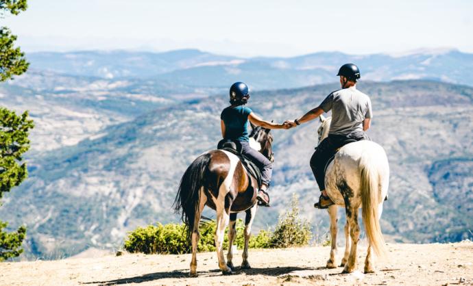 Balade à cheval au Ventoux